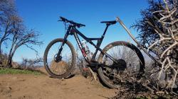 Cannondale scalpel3