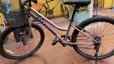 Bicicleta Urbana, Paseo O Fixie Oxford Luna
