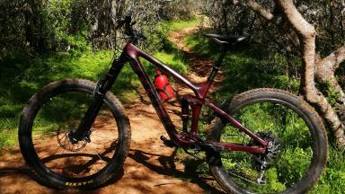 Bicicleta Enduro Trek Trek Remedy 9.7